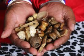 POWERFUL SPIRITUAL HEALER/SANGOMA/MEDIUM IN MPUMALANGA,LIMPOMPO,MUSINA+27655652367